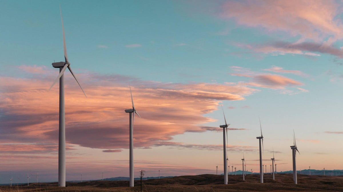 us generate enough renewable energy power country within  years study says mil homes powered by wind turbines feat