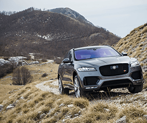 Practical yet primal, Jaguar's first SUV is a big kitty that never bores