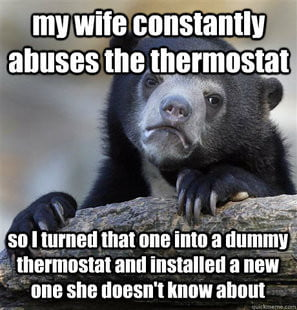 confession bear example