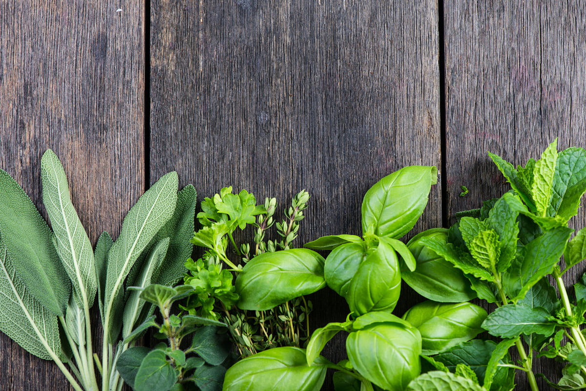how to grow herbs indoors  fresh from garden on wooden rustic background