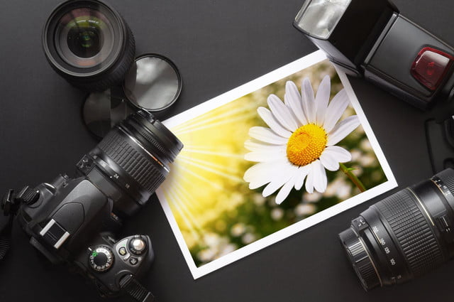 pond  stock photography photos video music pricing set your own equipment like dslr camera and image