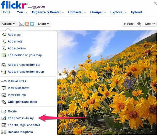 flickr and aviary