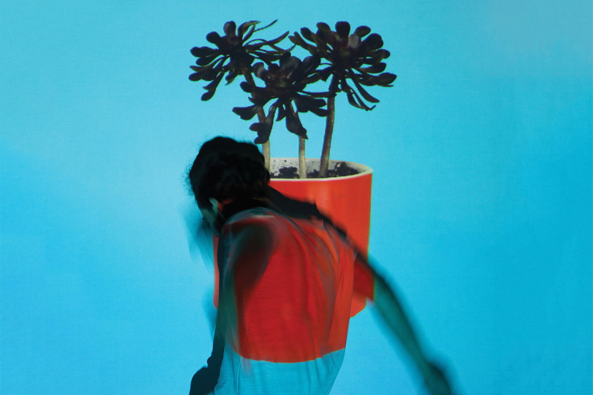 _images-uploads-album-Local_Natives_Sunlit_youth