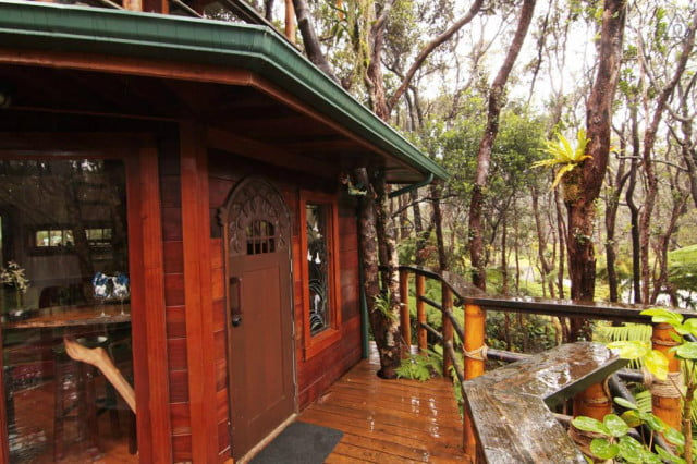 airbnb community compact treehouse