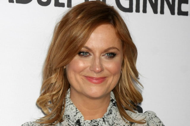 universal pictures amy poehler schooled