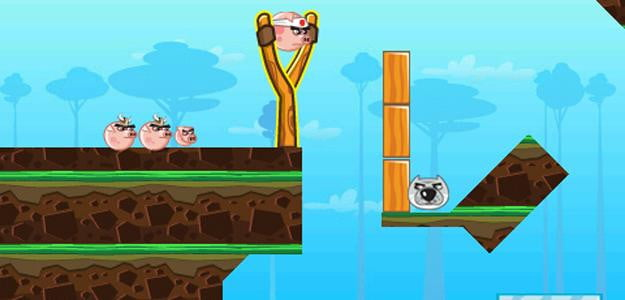 angry pigs screenshot blackberry app game