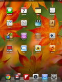 Apple iPad Mini review screenshot home iOS tablet
