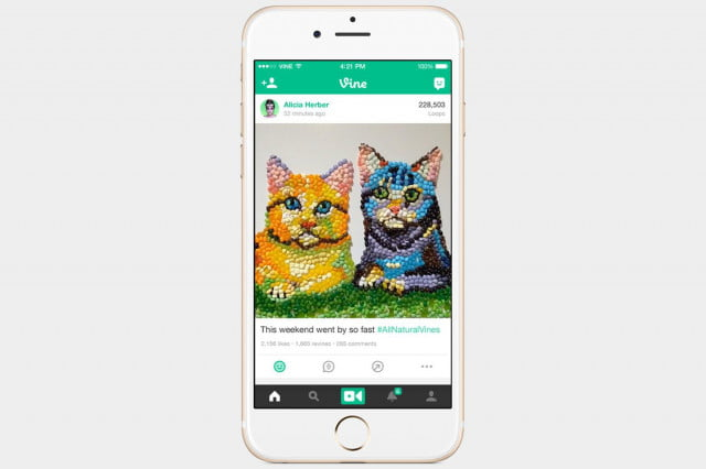 Best iOS apps for June Vine