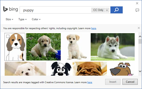 Bing Office Search Results
