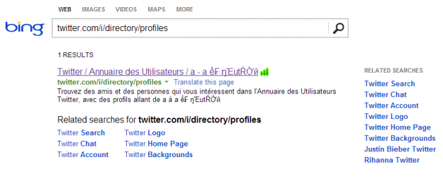 bing twitter directory results