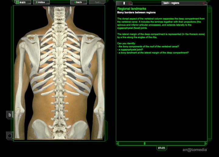 dead people problem doctors crave virtual cadavers br  b screenshot