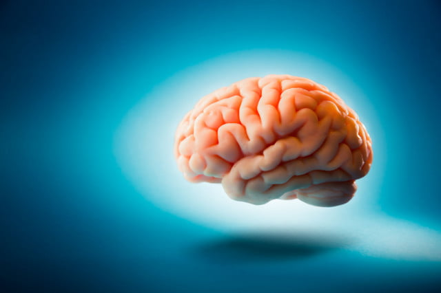 brain pain electrical pulses