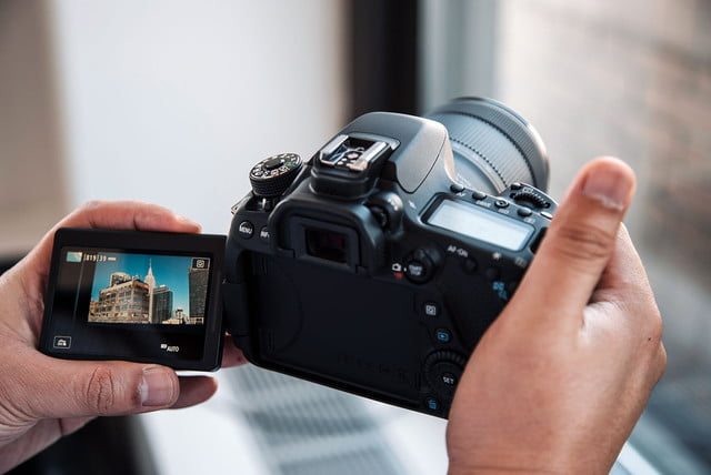 canon serious but cautious about  k video eos d