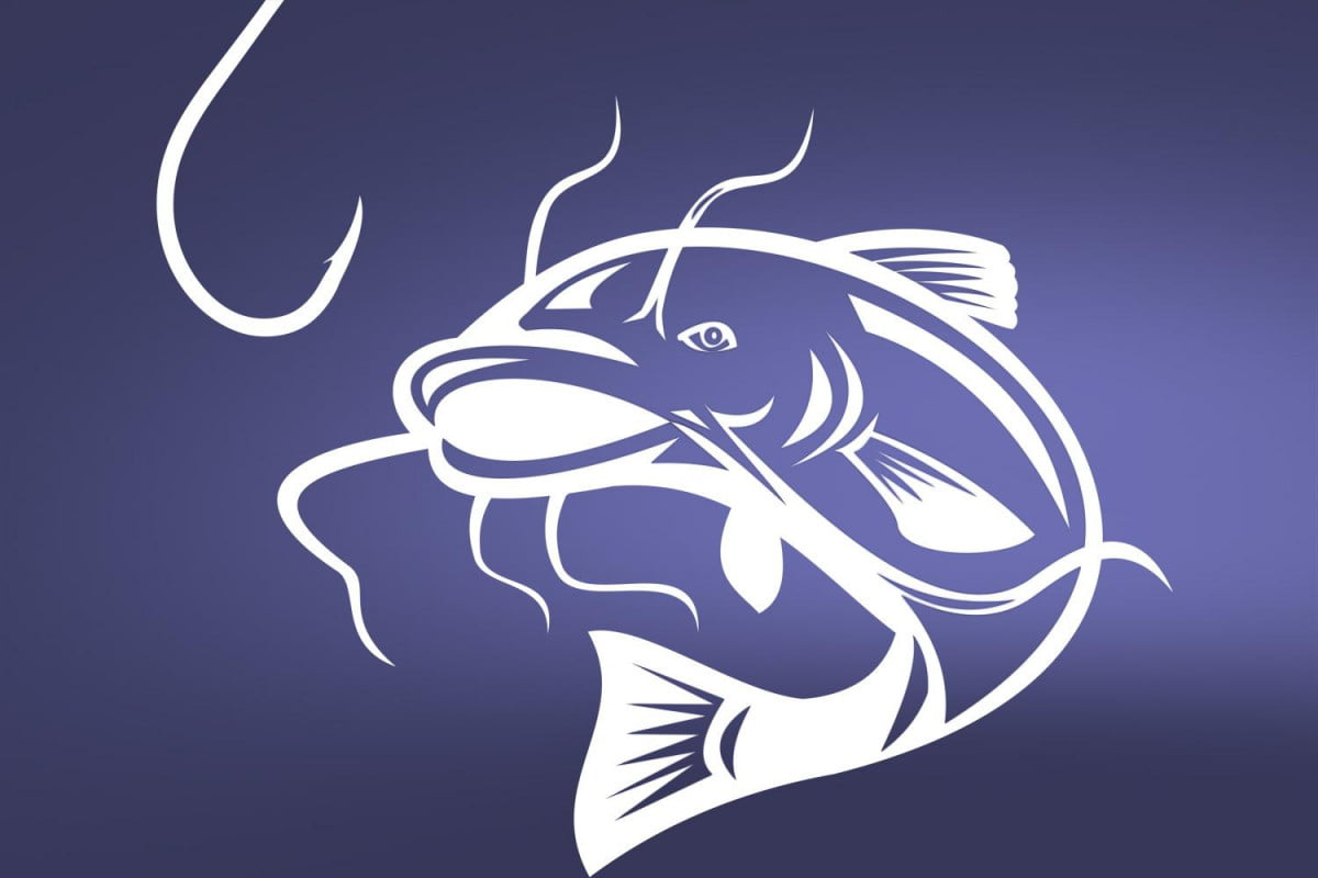 its catfishing season how to tell lovers from liars online and more catfish header