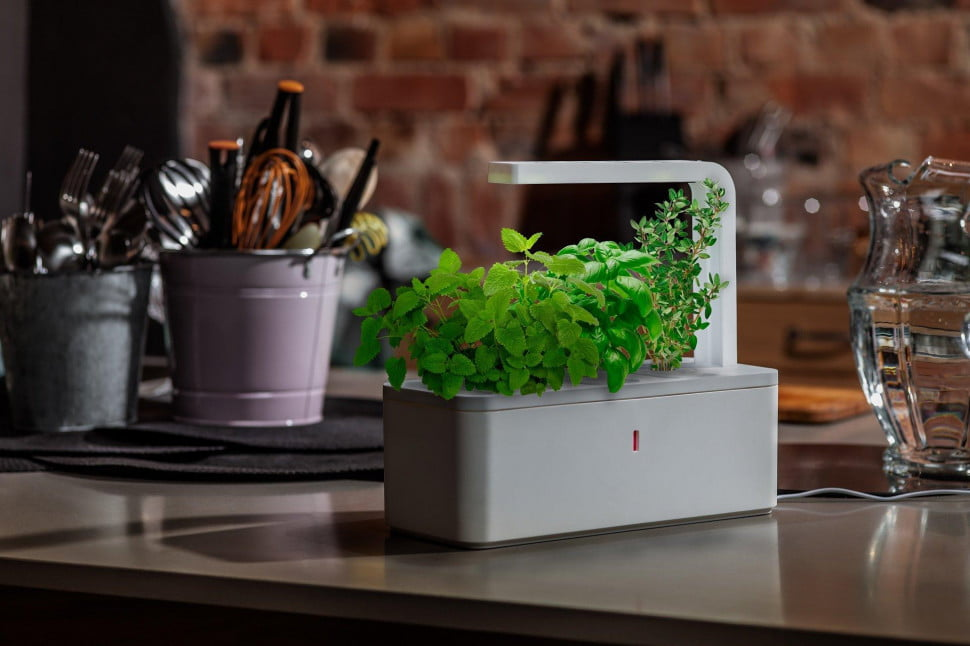 Five devices to help you grow a garden indoors digital for Indoor gardening trends