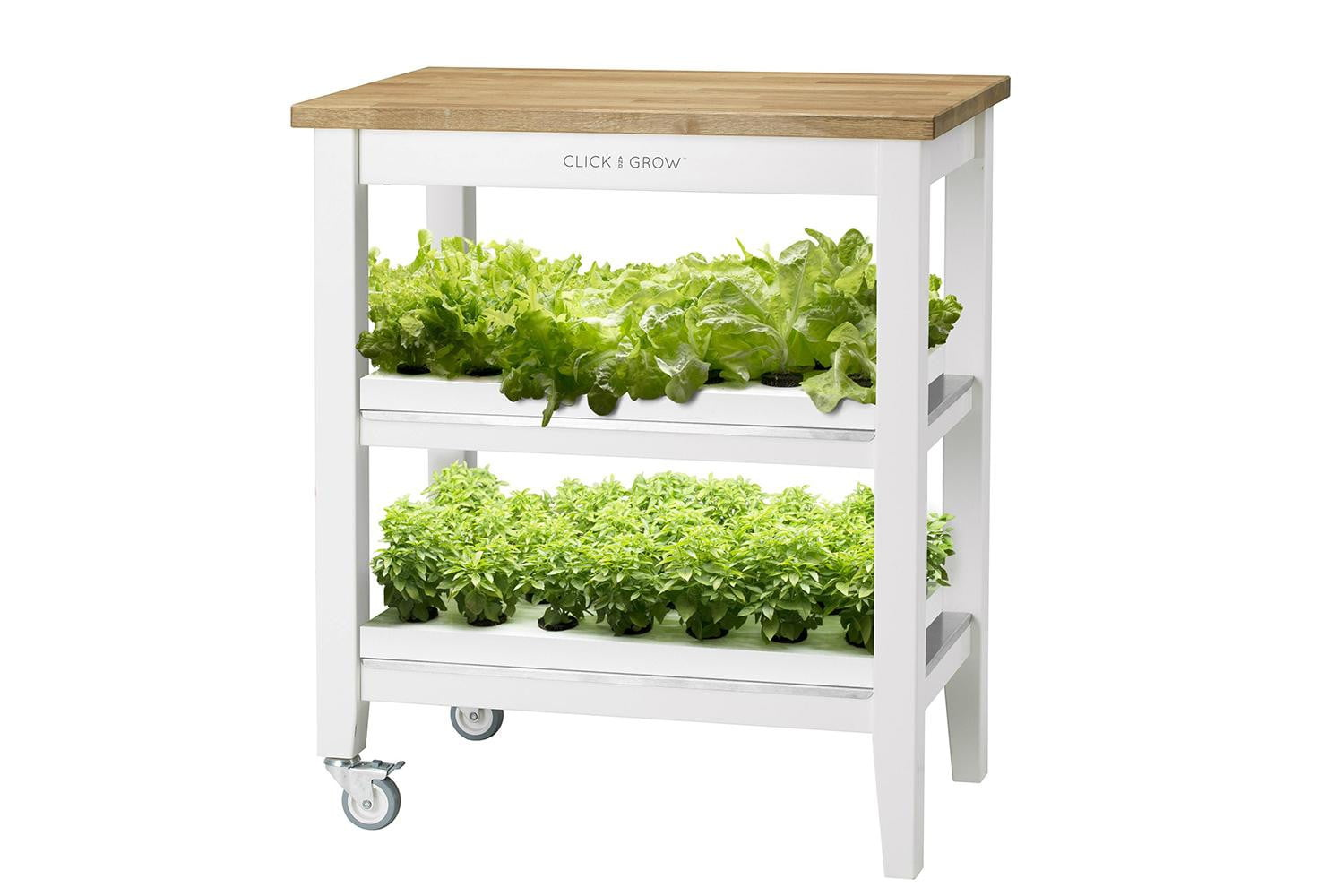 Click & Grow's Smart Mini Farm Lets You Grow Food Indoors | Digital ...