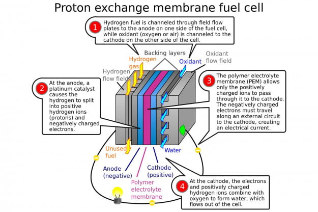Diagram of a Proton exchange membrane fuel cell
