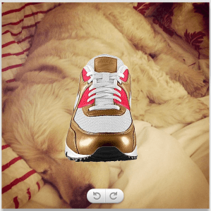 instagram dog shoes