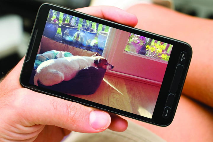 what my dog taught me about the new surveillance state dropcam android phone