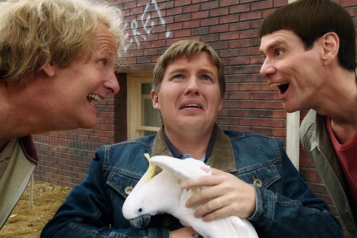 dumb dumber review and to