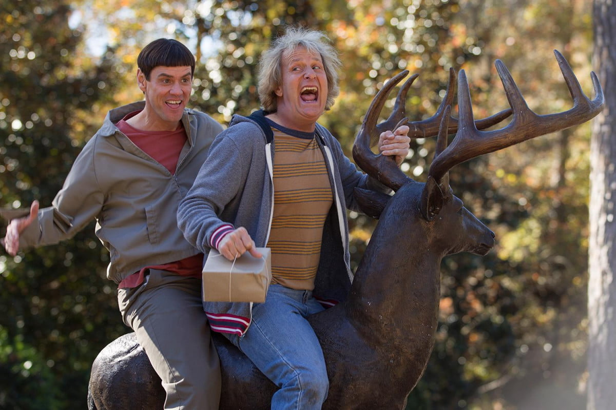 new clip dumb dumber features surprise cameo need see and to interview