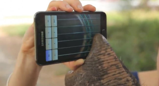 elephant with Galaxy Note 2