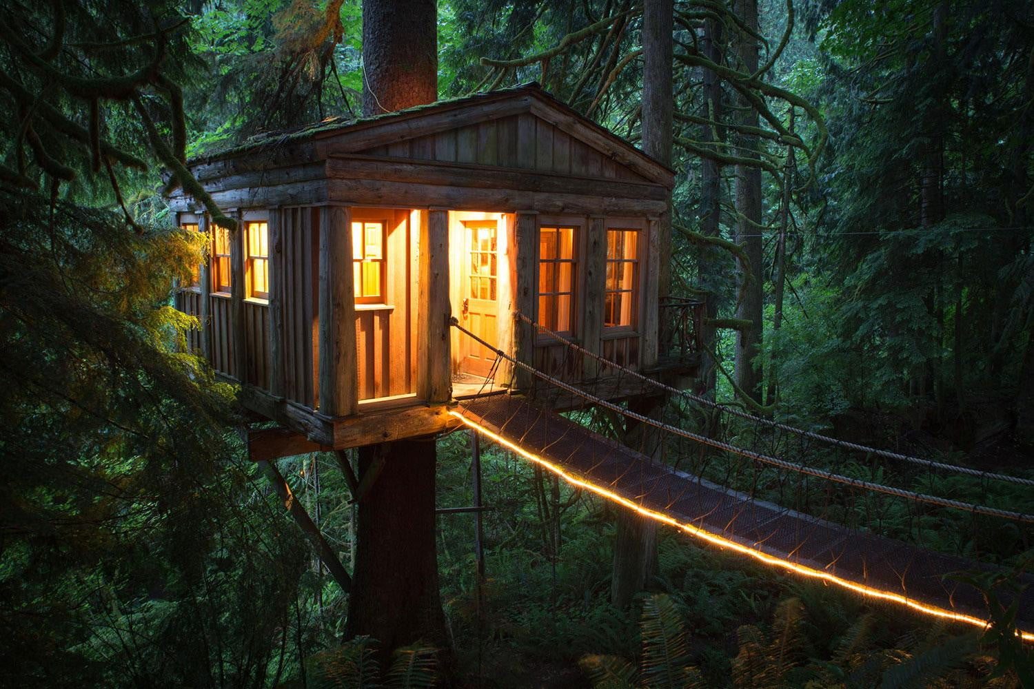 treehouse masters alex meyer. Get Free High Quality HD Wallpapers Alex Meyer Treehouse Masters