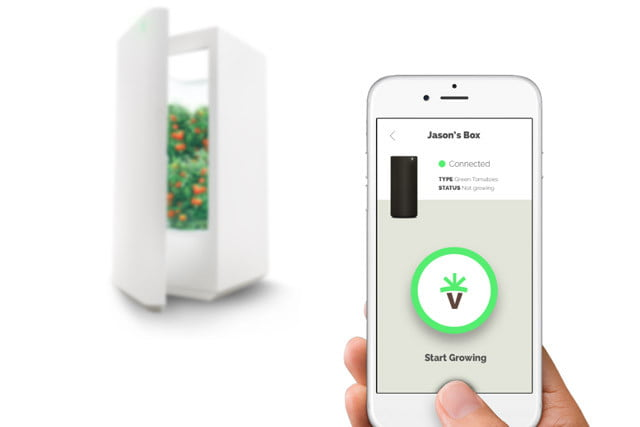 everblume hydroponic indoor appliance
