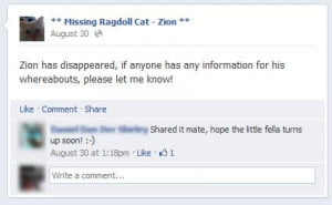Facebook Zion page post
