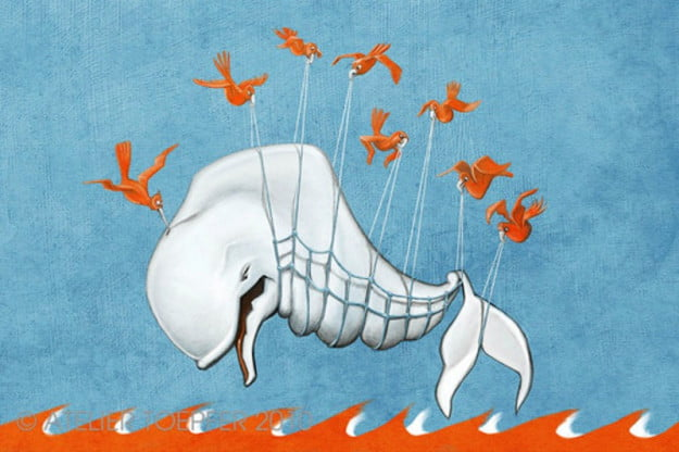 Twitter fail whale activity stream