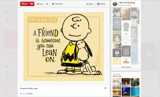 Peanuts Friends Picture