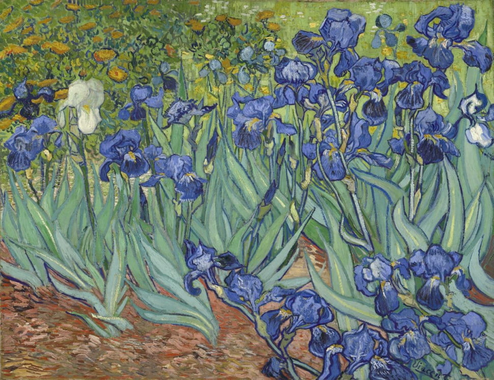 Vincent van Gogh (Dutch, 1853 - 1890) Irises, 1889, Oil on canvas Unframed: 71.1 x 93 cm (28 x 36 5/8 in.) Framed: 95.3 x 115.6 x 7.9 cm (37 1/2 x 45 1/2 x 3 1/8 in.) The J. Paul Getty Museum, Los Angeles