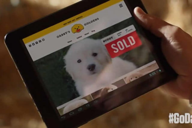 godaddy yanks super bowl ad puppy mill criticism sold