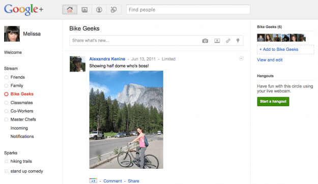 Google Plus Circles