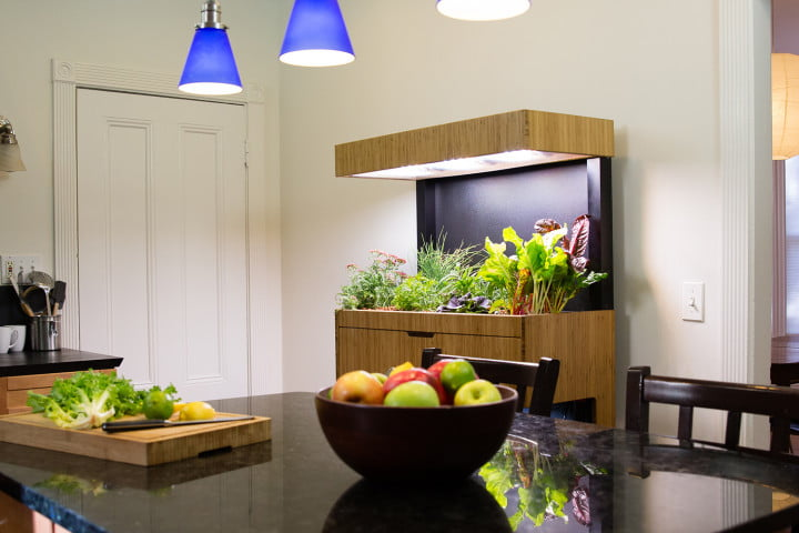 Grove Ecosystem Launches a Kickstarter for Its Indoor Garden