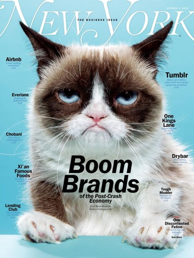 Grumpy on cover of NY MAG