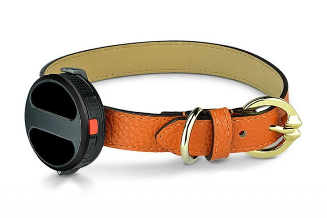 Haier smart dog collar