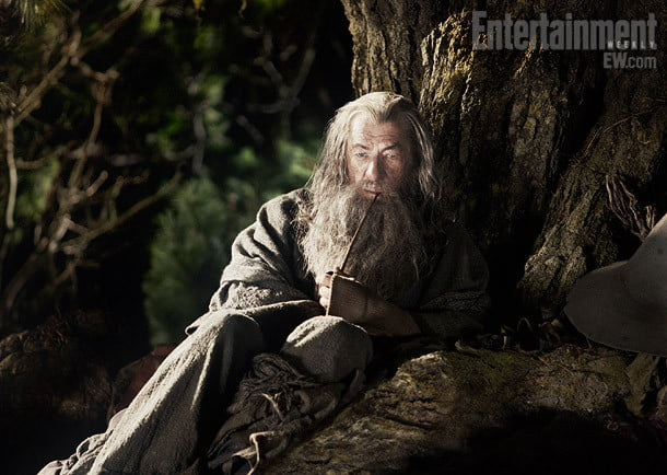 Ian McKellan via Entertainment Weekly