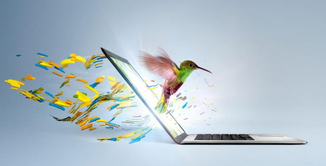 Intel Ultrabook Hummingbird