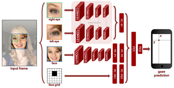 Diagram showing how the data is used to predict eye movement in subjects