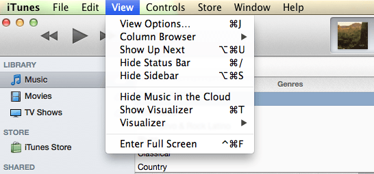 itunes  view menu