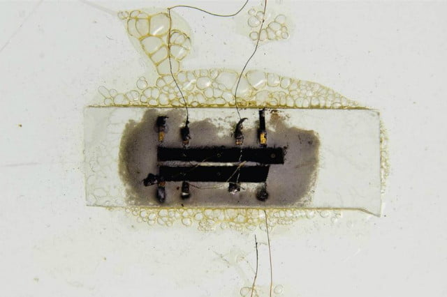 worlds first microchip fails sell auction kilby
