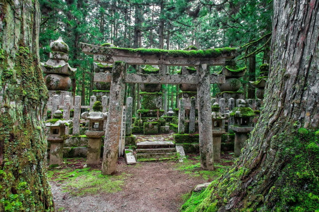 Finding Buddha: Why Japan's epic Kumano Kodo Pilgrimage should be on your bucket list