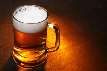 lager-yeast-beer