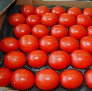 Laser Food tomatoes