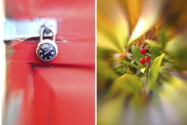 Photos taken with a 2x telephoto accessory lens, on top of the Lensbaby Sweet Spot Lens (Image by Ben Hutchinson)