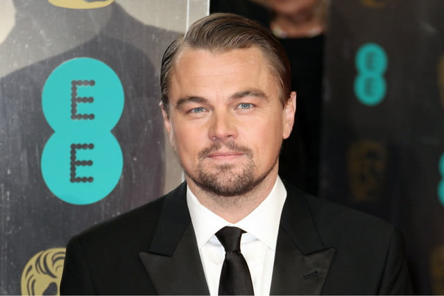 leonardo dicaprio the sandcastle empire