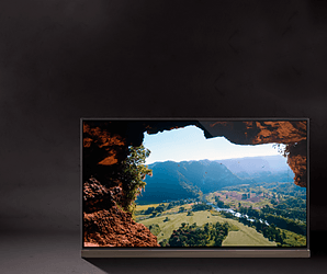80 experts compared this year's hottest TVs side by side, and the winner was ...