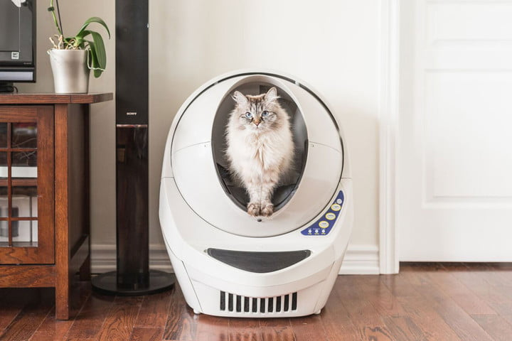 Litter_Robot-_Automatic_self-cleaning_litter_box_