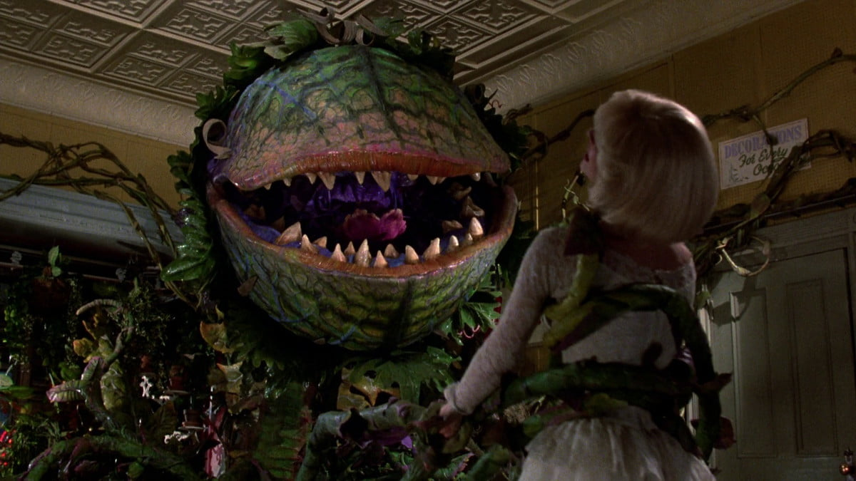 little shop of horrors remake greg berlanti